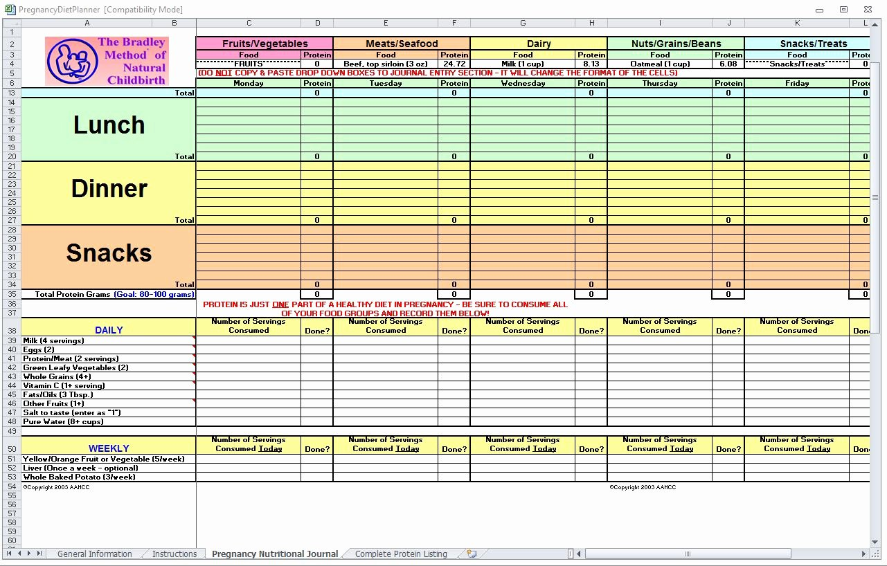 Food Log Template Excel Lovely Pregnancy Diet Spreadsheet