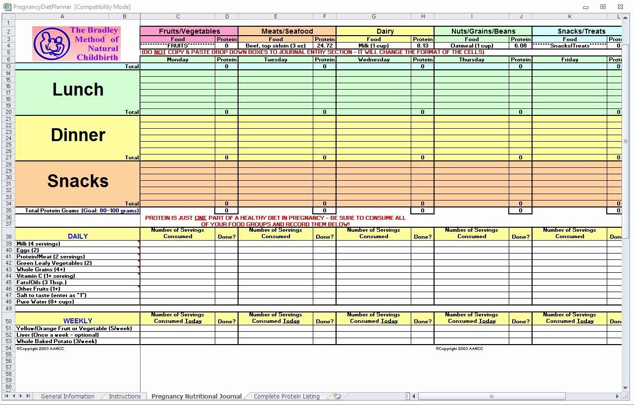 Food Log Template Excel Lovely Pregnancy Diet Spreadsheet