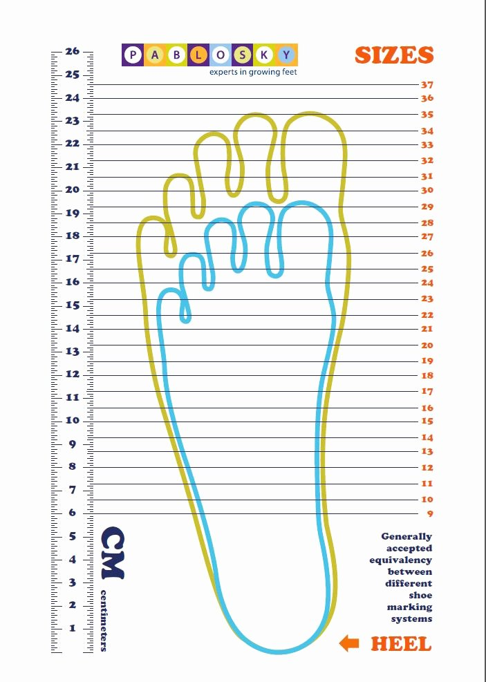 Foot Measurement Chart Printable Best Of 28 Of Adult Foot Measurement Template