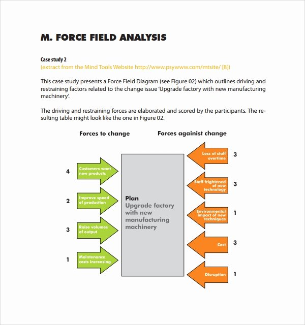 Force Field Analysis Template Word Beautiful Sample force Field Analysis Template 7 Free Documents