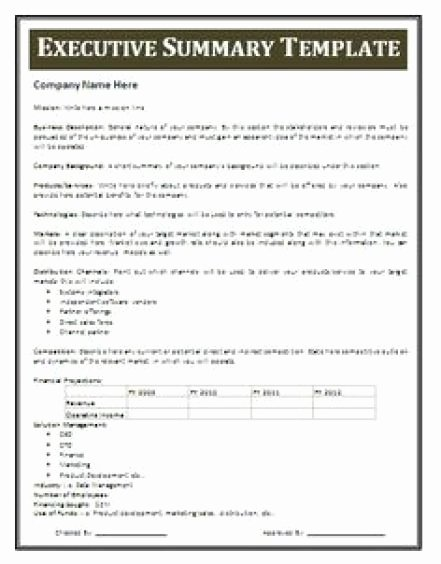 Free Executive Summary Template Beautiful 13 Executive Summary Templates Excel Pdf formats