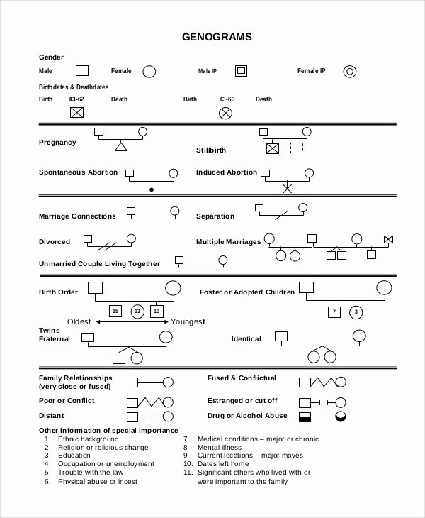 Free Genogram Template for Word Unique Free Genogram Templates 8 Family Word Powerpoint