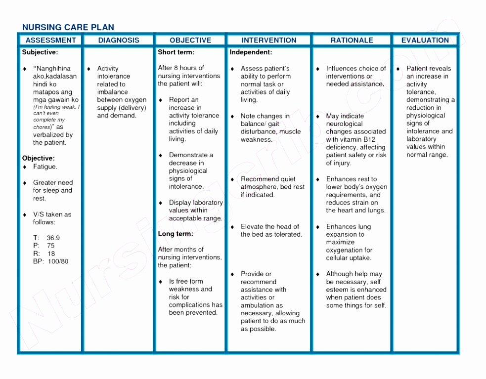 Free Nursing Care Plans Elegant Sample Nursing Care Plan for Nsd Patient