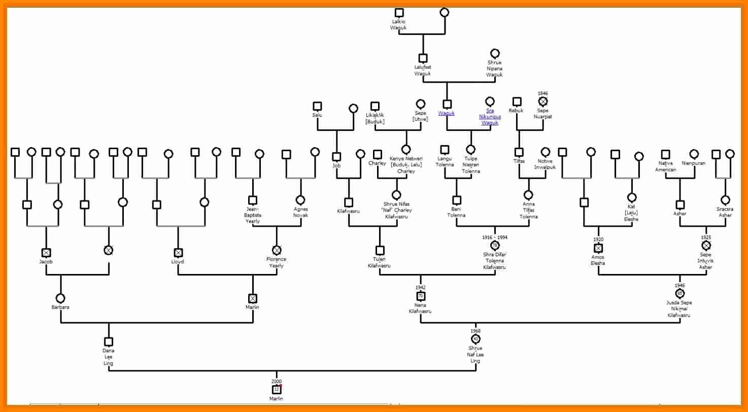 Free Online Genogram Creator Awesome 6 How to Draw A Genogram