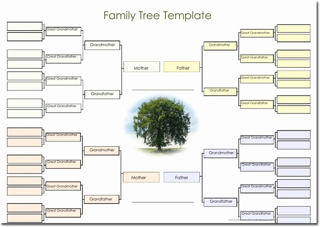 Free Online Genogram Creator Elegant 21 Genogram Templates Easily Create Family Charts