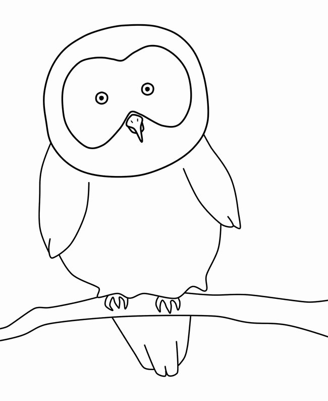 Free Owl Printable Template Awesome Owl Template Animal Templates