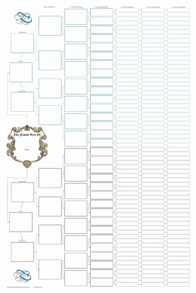 Free Pedigree Chart Template Lovely 8 Generation Ancestral Pedigree Family Tree Chart