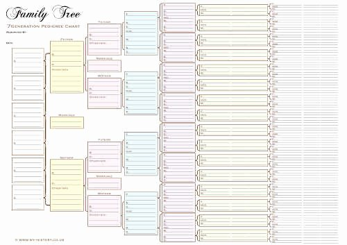 Free Pedigree Chart Template New A3 Seven Generation Pedigree Chart