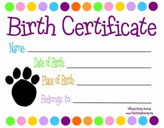 Free Printable Dog Birth Certificate Awesome 25 Best Ideas About Birth Certificate On Pinterest
