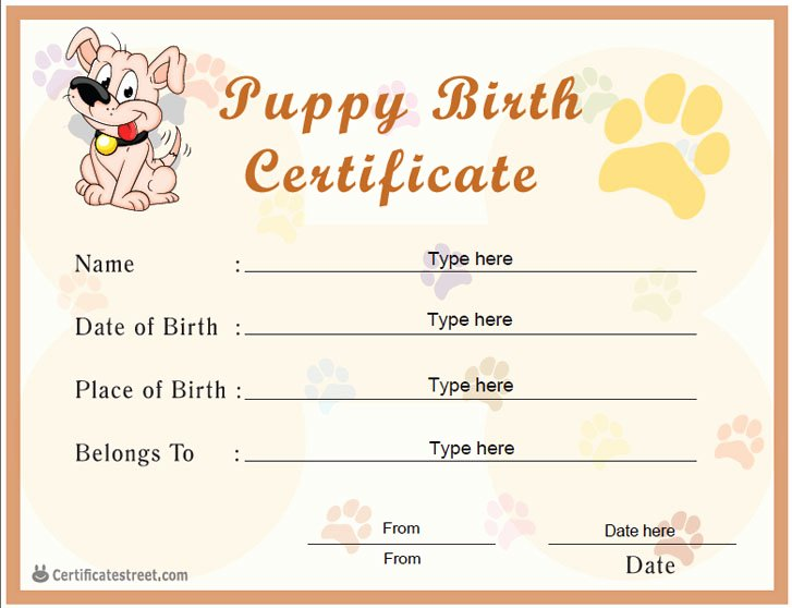 Free Printable Dog Birth Certificate Awesome Special Certificates Puppy Birth Certificate