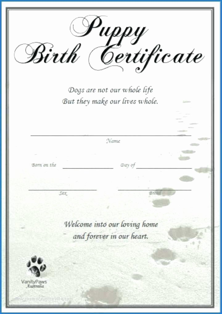 Free Printable Dog Birth Certificate Fresh Ethercard