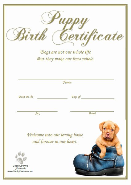 Free Printable Dog Birth Certificate Fresh Puppy Birth Certificate