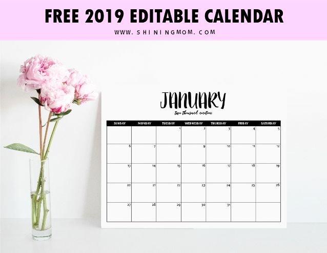 Free Printable Editable Calendar Fresh Free Fully Editable 2019 Calendar Template In Word