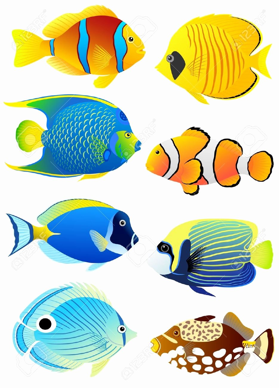 Free Printable Fish Pictures New Aquarium Fish Clipart Clipground