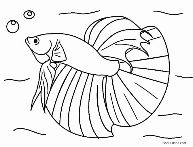 Free Printable Fish Pictures New Free Printable Fish Coloring Pages for Kids