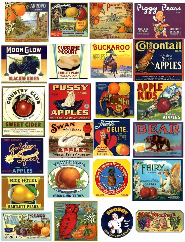 Free Printable Vintage Labels Beautiful 198 Best Images About Printables for Children S Play Food