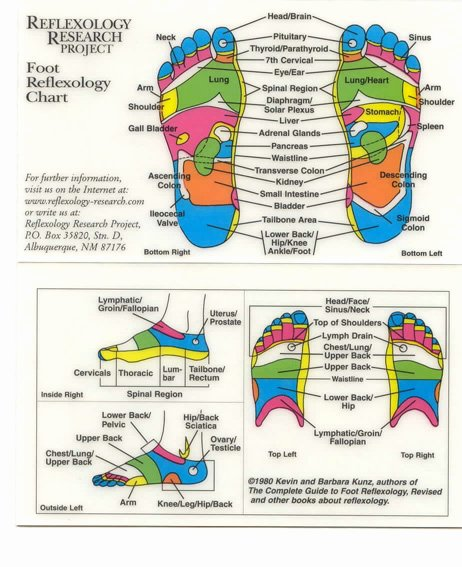 Free Reflexology Foot Chart Awesome Foot Reflexology Chart