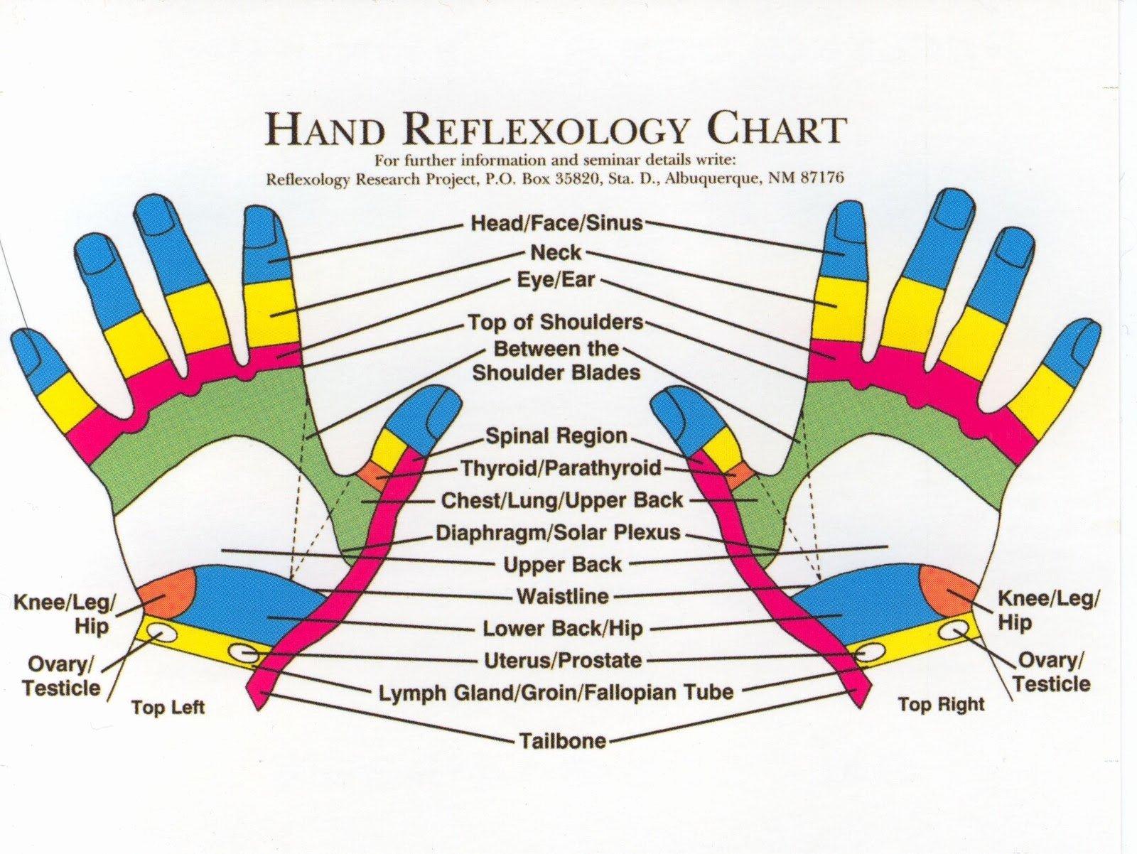 Free Reflexology Foot Chart New Reflexology Products Hand Reflexology Charts Personalized