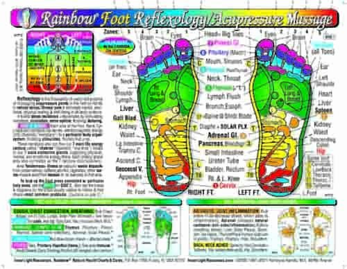 Free Reflexology Foot Chart Unique Free 2 Day Shipping Rainbow Foot Reflexology Acupressure