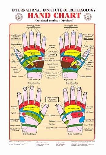 Free Reflexology Foot Chart Unique Hand Reflexology Wall Chart Dwight byers