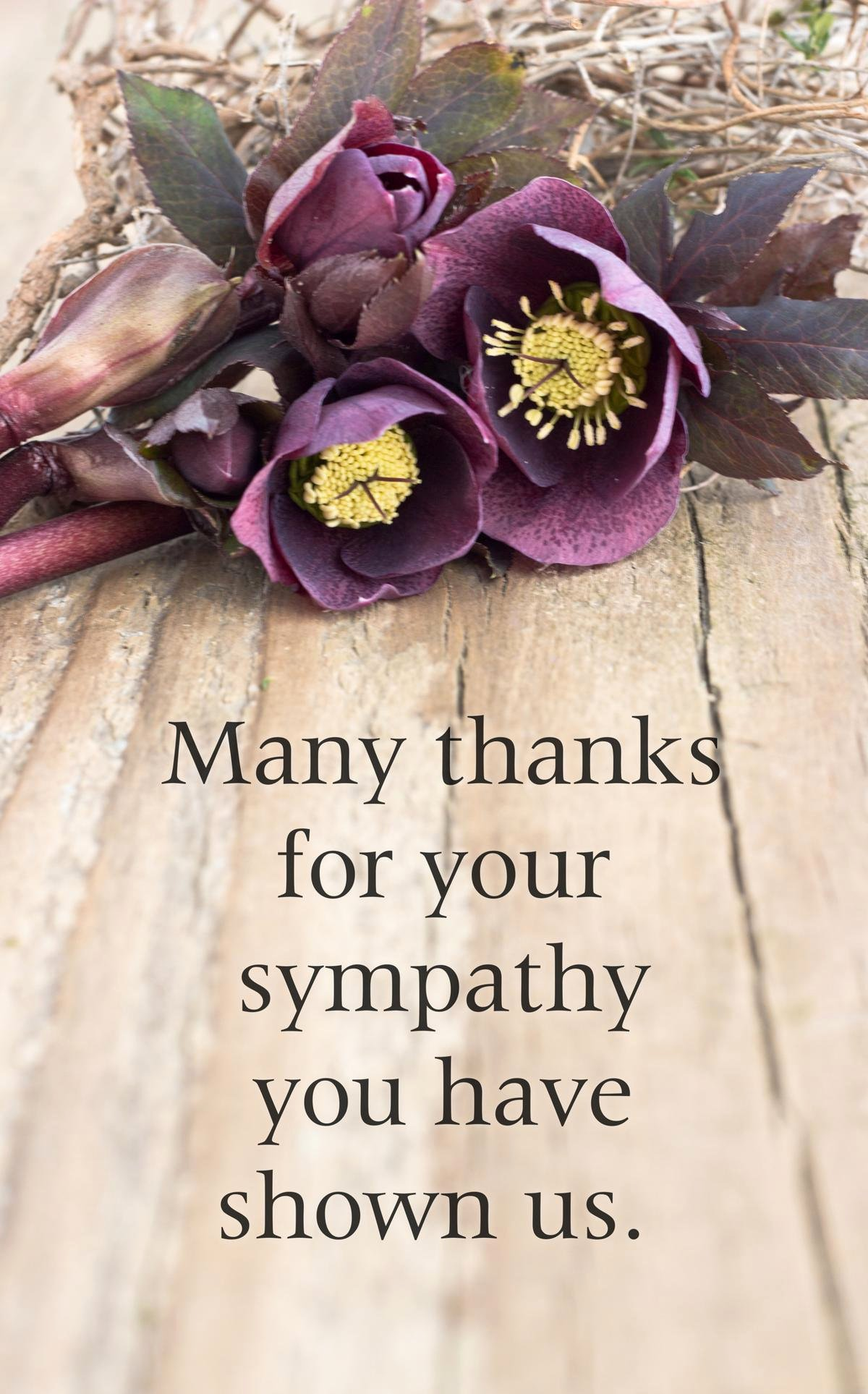 Funeral Thank You Sayings Fresh Healing Quotes On Losing someone to Help You Feel Lighter