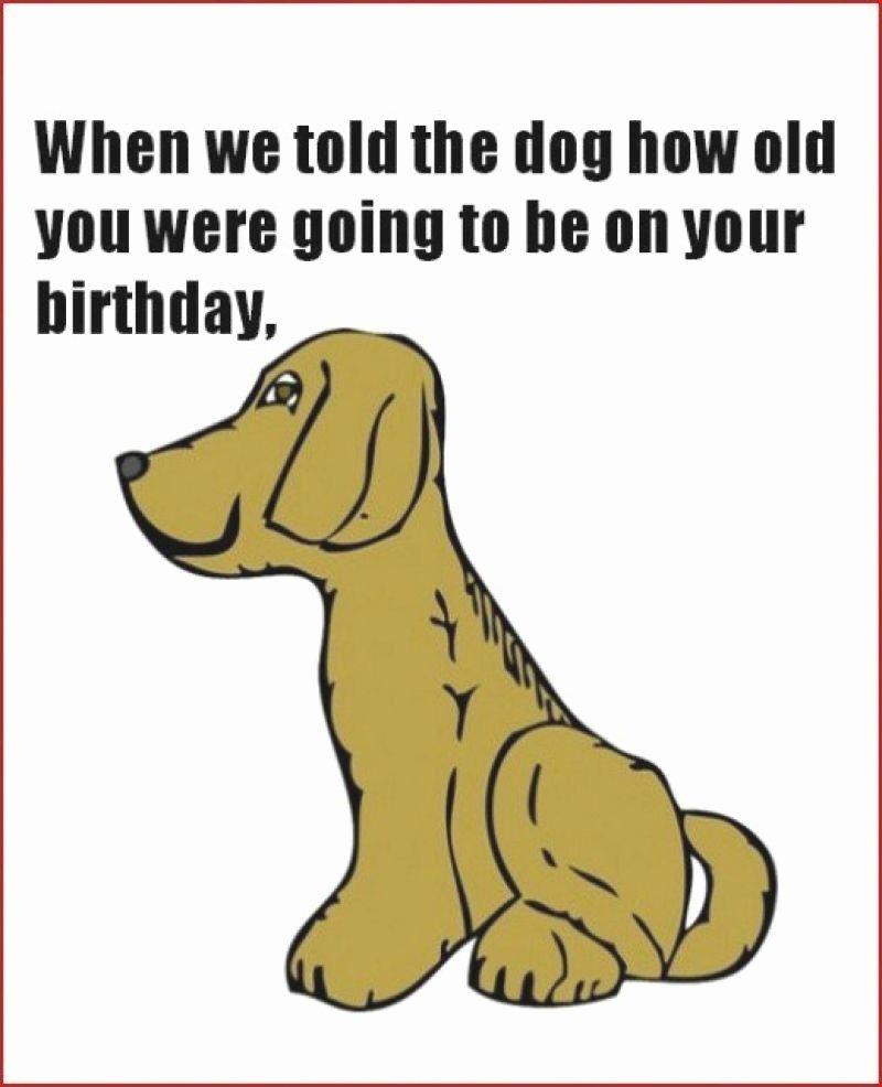 Funny Birthday Card Printable Inspirational Free Printable Funny Birthday Cards for Adults Printable
