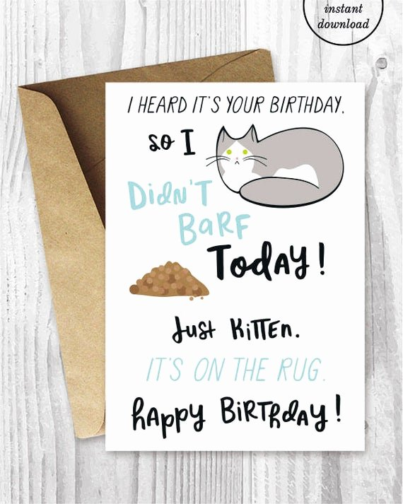 Funny Birthday Card Printable Inspirational Funny Birthday Printable Cards Funny Cat Birthday Cards Grey