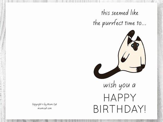 Funny Free Printable Birthday Cards Elegant Funny Birthday Cards Printables Funny Siamese Cat Birthday