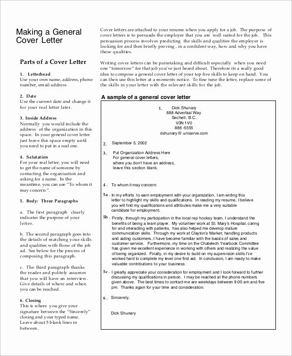 Generic Letter Of Recommendation Template Elegant Sample Generic Cover Letter 7 Documents In Pdf