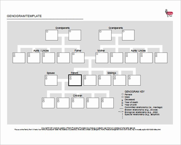 Genogram Template Microsoft Word Lovely 36 Genogram Templates Pdf Word Apple Pages Google