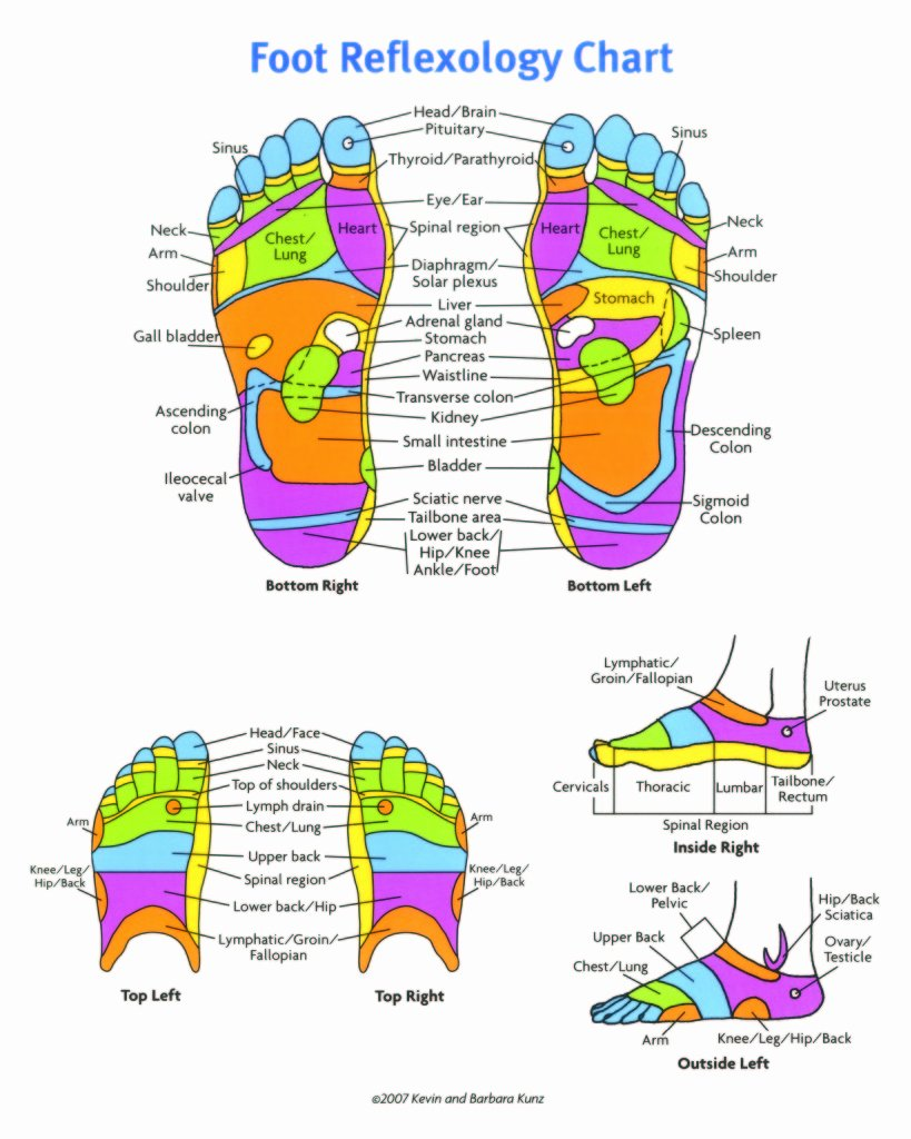 Hand and Foot Reflexology Chart Beautiful Download All Best Foot Reflexology【2019】charts