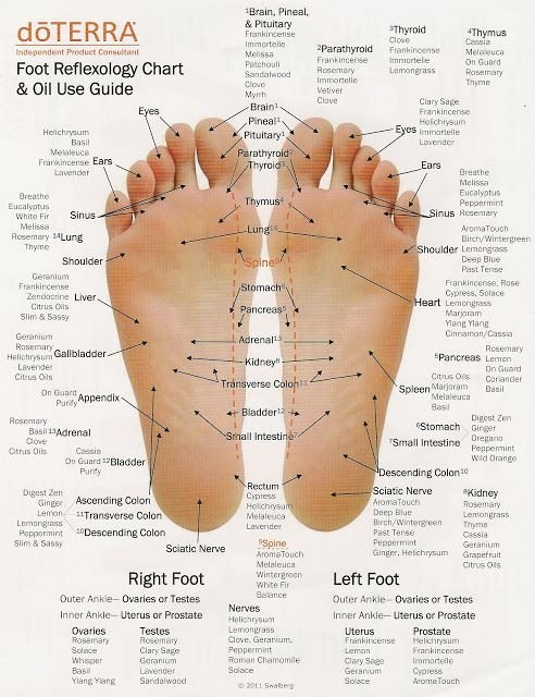 Hand and Foot Reflexology Chart Best Of Renew Essential Oils 201 Medical and Skin Care Properties
