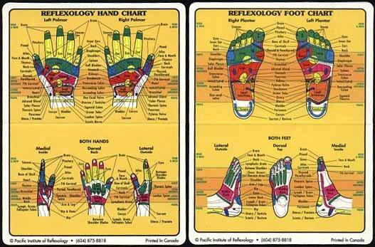 Hand and Foot Reflexology Chart Fresh Active Life 2009 Muller Activa