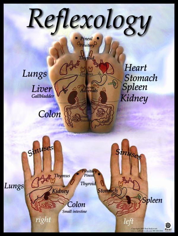 Hand and Foot Reflexology Chart Fresh Infographics & Posters Real Bodywork