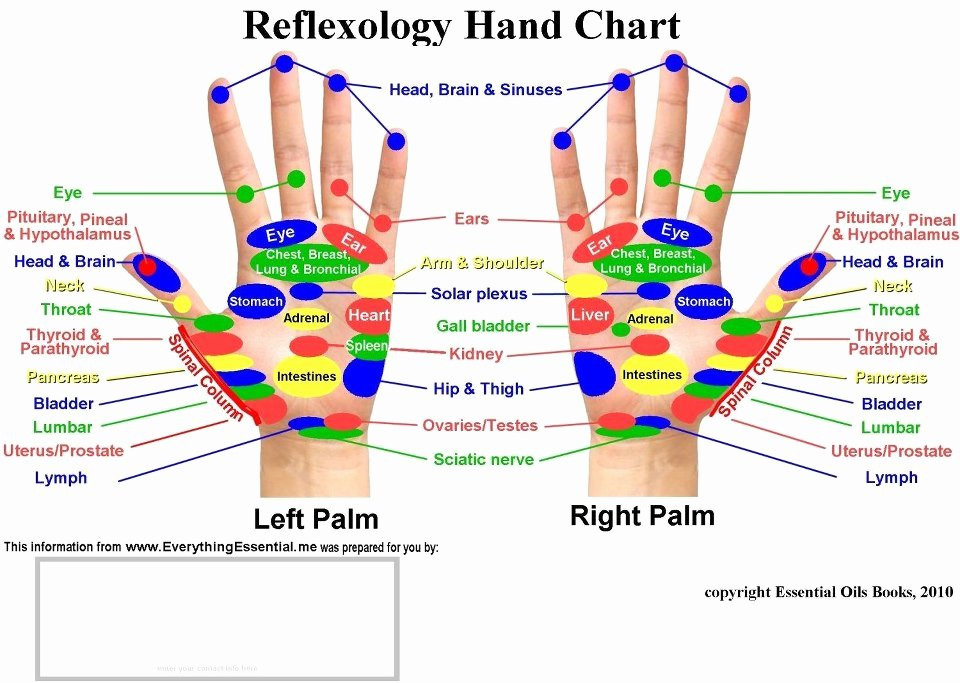 Hand and Foot Reflexology Chart Inspirational My Own thoughts Acupressure Reflexology Charts Collection
