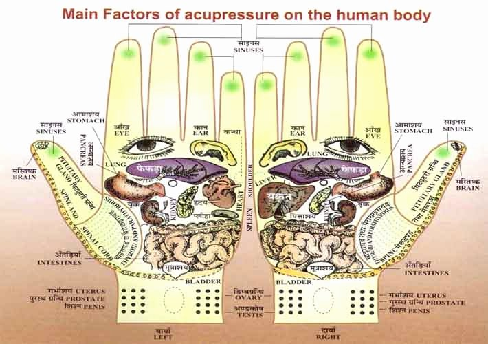 Hand and Foot Reflexology Chart Lovely Hand Reflexology Charts