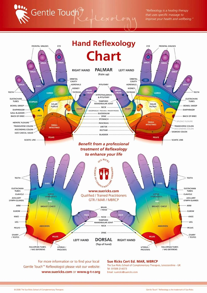 Hand and Foot Reflexology Chart Unique Line Free E Course with David Avocado Wolfe