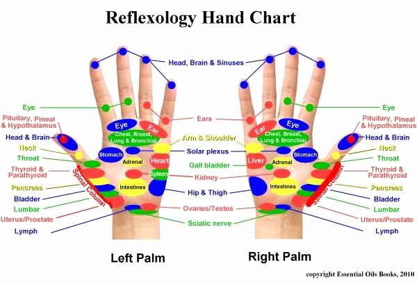 Hand and Foot Reflexology Chart Unique Two Feathers Reiki Hand Reflexology