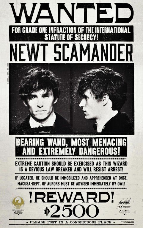 """Harry Potter Wanted Poster Elegant Fantastic Beasts & where to Find them 11"""" X 17"""" Wanted"""