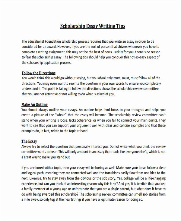 High School Scholarship Essay Examples Unique 21 Essay Writing Examples