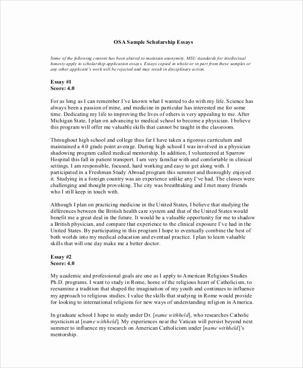 High School Scholarship Essay Examples Unique Sample Scholarship Essay 7 Documents In Pdf Word