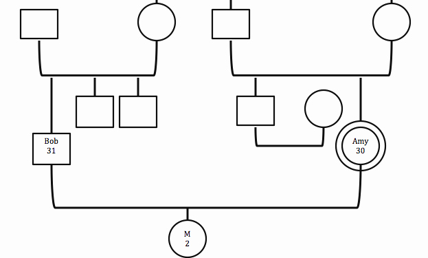 How to Create A Genogram New Family Of origin Exploration for the therapist How to