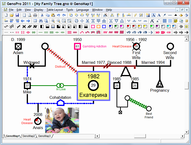 How to Create A Genogram New Inserting A Key Legend for Genogram Symbols Genopro Help
