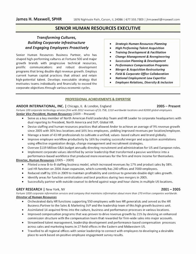 Hr Executive Resume Sample New the top 4 Executive Resume Examples Written by A