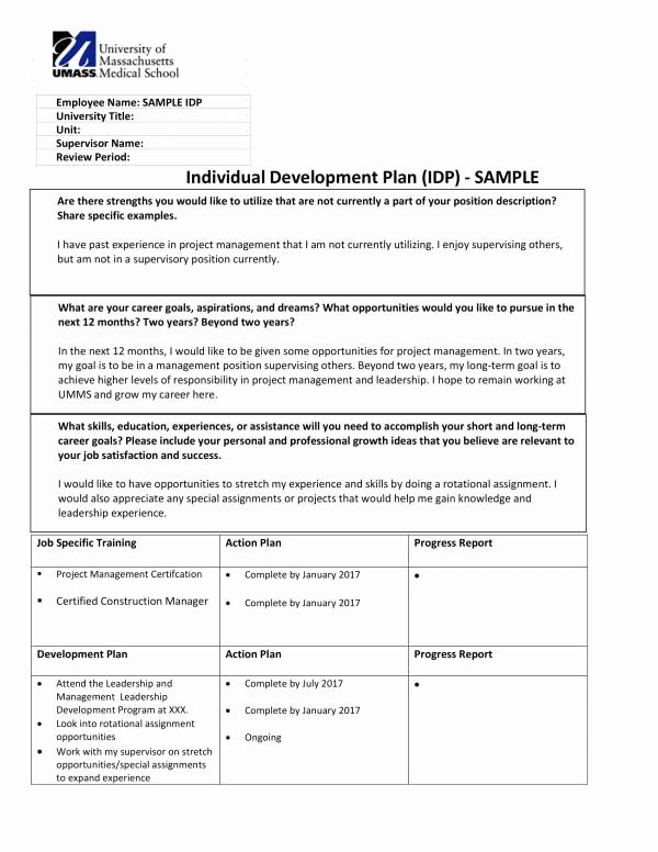 Individual Development Plan Sample Fresh Free 9 Personal Development Plan Templates