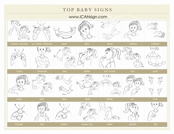 Infant Sign Language Chart Elegant Our top 30 Baby Sign Language Signs to Make Your Caregiver
