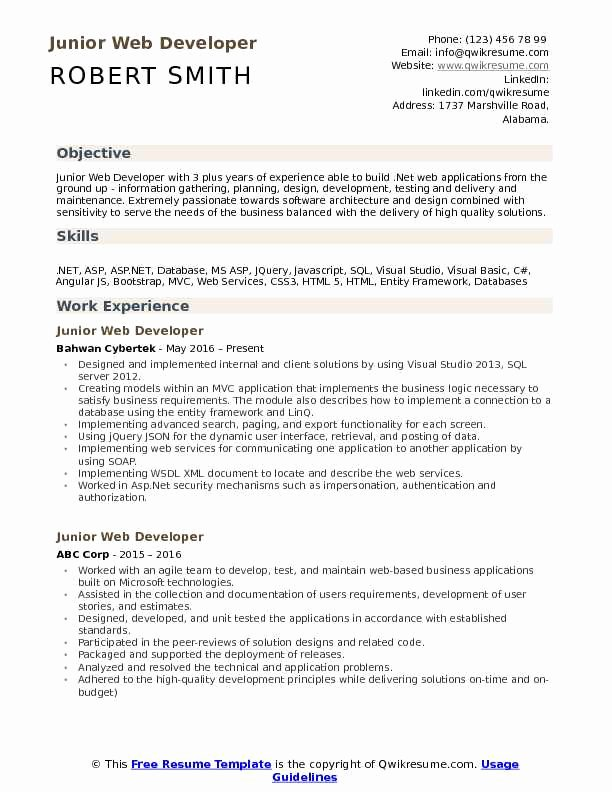 Junior Java Developer Resume Beautiful Junior Web Developer Resume Samples
