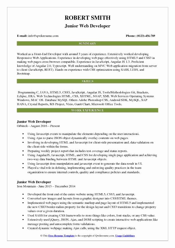Junior Java Developer Resume Elegant Junior Web Developer Resume Samples