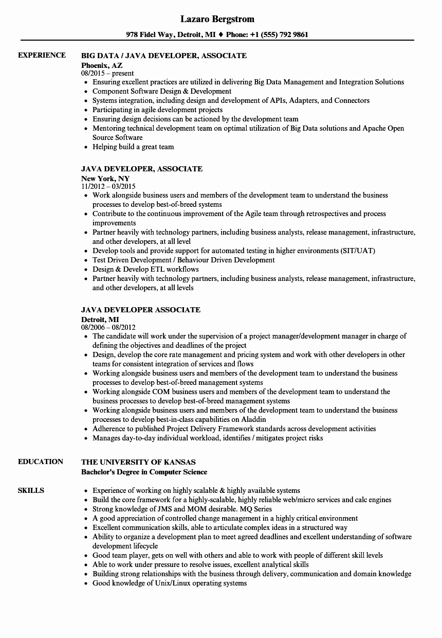 Junior Java Developer Resume Lovely Java Developer associate Resume Samples