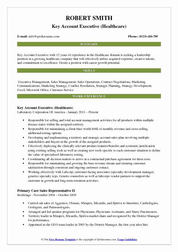 Key Account Manager Resume Lovely Key Account Executive Resume Samples
